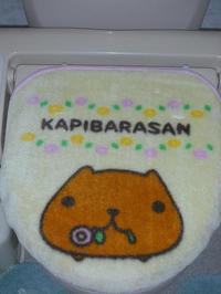 Kapi3