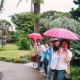 江ノ島植物園にて