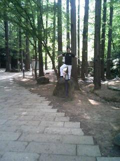 生田緑地ハイキングですっ。