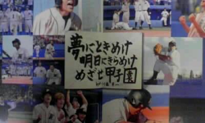 ROOKIES〜卒業(^-^)v