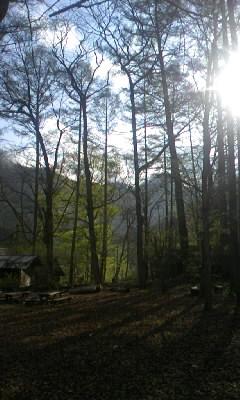 中津川キャンプ場の朝